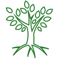 green icon of a tree with roots